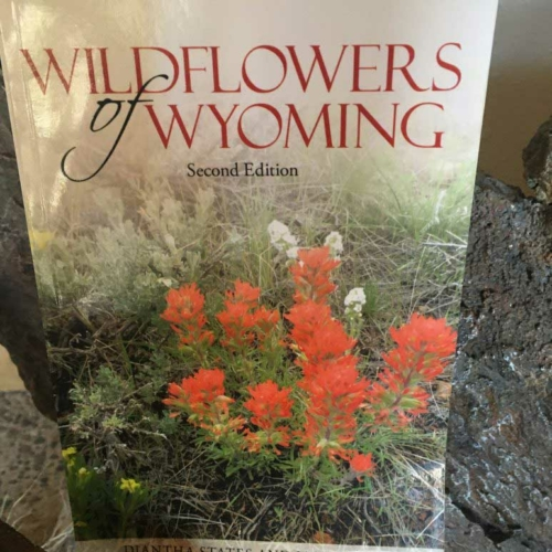 Wildflowers of Wyoming book