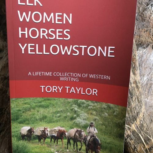 elk women horses yellowstone